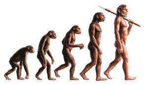 原始人 進化